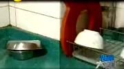 新款美的生活燃氣熱水器安裝方法 燃氣熱水器安裝使用方法_高清
