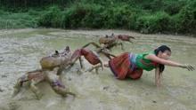 生存技能-原始小姐姐在泥池里抓螃蟹!