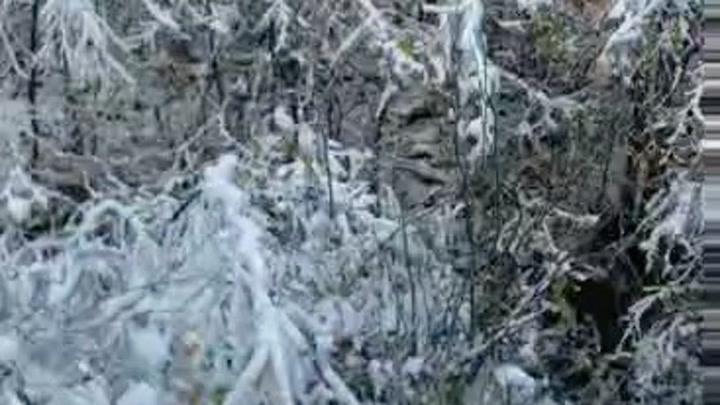 【爱的轩言】在飘雪的季节中想念……